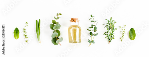 Fototapeta Essential oil and green branches, leaves eucalyptus on white background. Medicinal herbs. Flat lay. Top view. obraz