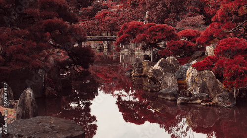 Wall Murals Kyoto The red gardens of Japan