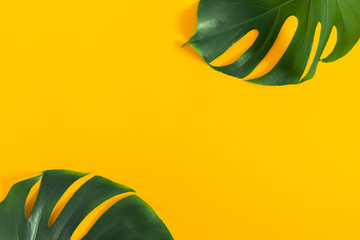 Fototapeta na wymiar Summer concept. Green leaves Monstera on yellow background. Flat lay, top view, copy space