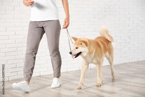 Stampa su Tela Young woman with adorable Akita Inu dog indoors
