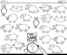 Find Two Same Pig Characters C...