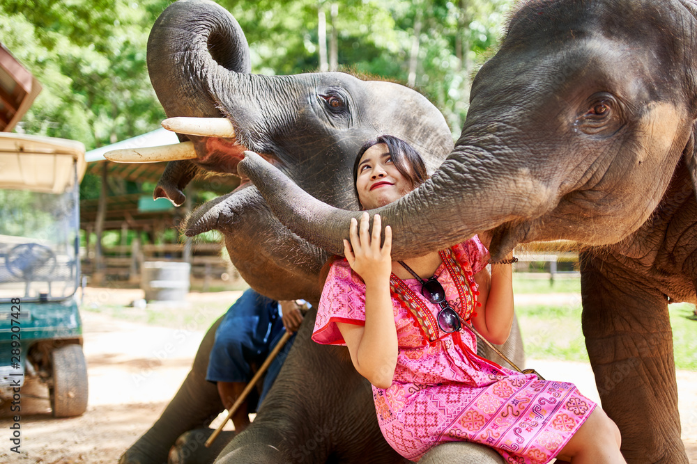 Fototapety, obrazy: female thai tourist having fun with baby elephant at sanctuary in thailand
