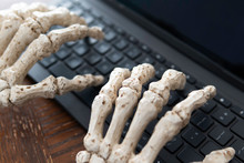 Skeleton Hands Typing A Report...