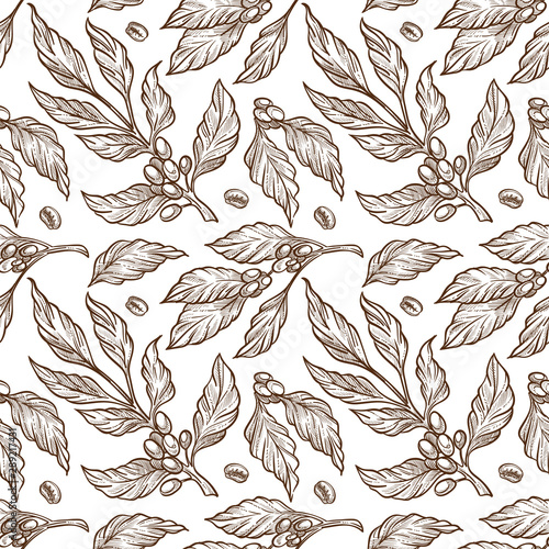 plant-coffee-beans-on-branch-sketch-seamless-pattern