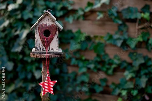 Fotografie, Obraz Cute Birdhouse With Star Across Ivy Wall