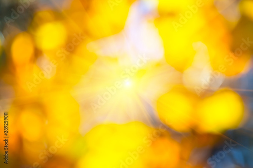 Foto auf AluDibond Herbst abstract blurred golden leaves background with sparkle sun in a centre