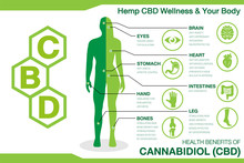 Hemp CBD Wellness And Your Bod...