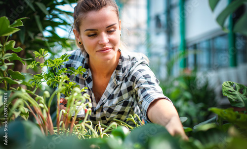 Cadres-photo bureau Fleuriste Woman shopping for and looking at plants in garden center