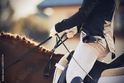Cuadros en Lienzo A rider in a suit and gloves quickly rides a horse and holds its bridle
