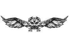 Black Owl With Big Wings On Wh...