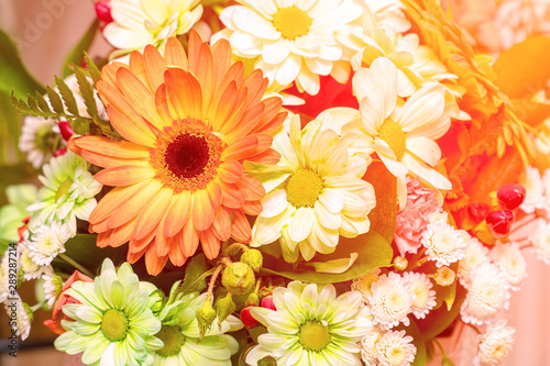 Bouquet of white and orange gerberas in sunlight. Decorative floral arrangement of different gerberas. Selective focus