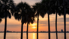 Beach Sunset. Palm Trees At Sunset In Siesta Key Beach, Florida