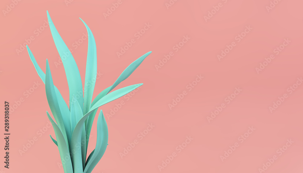 Fototapety, obrazy: vivid color plant on pink background