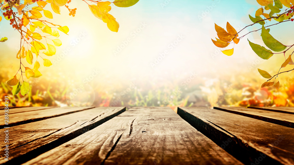 Fototapety, obrazy: Tree branches with colorful autumn leaves over wooden table