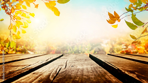Tree branches with colorful autumn leaves over wooden table - 289334291