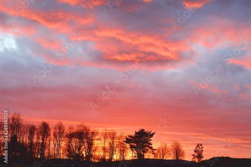 Foto auf AluDibond Koralle sunset landscape