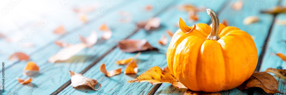 Fototapeta Autumn Background - Mini Pumpkin On Rustic Blue Table With Leaves And Sunlight