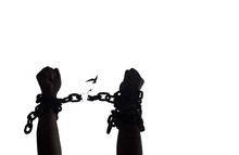 International Day For The Remembrance Of The Slave Trade And Its Abolition Concept: Silhouette Human Hands Raising And Broken Chains Isolated On White Background