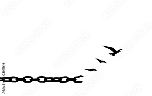 Fotografie, Obraz  Freedom concept: Silhouette of bird flying and broken chains isolated on white b