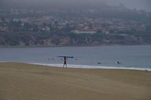 Junge Trägt Surfbrett Ins Wasser An Strand Mit Möwe Und Anderen Surfern Im Wasser An Frühem Morgen Mit Küste