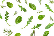 Organic Basil  Leaves And Ruccola Herb  Isolated On White Background. Herbs Pattern.  Flat Lay, Top View. Food Ingredient Concept