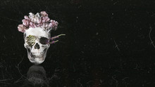 Beautiful Floral Skull With Black Copy Space Background
