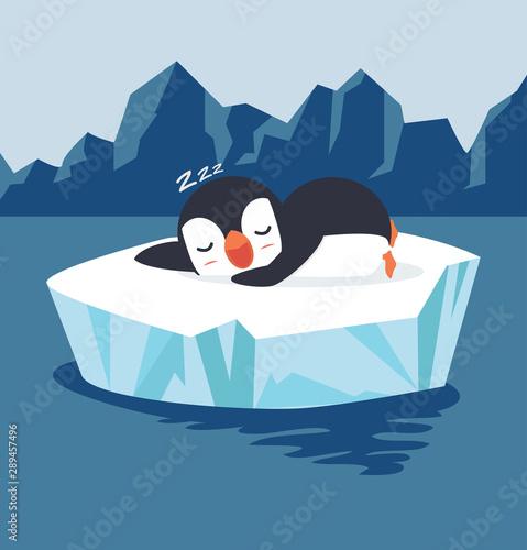 mata magnetyczna penguin sleep on ice floe vector