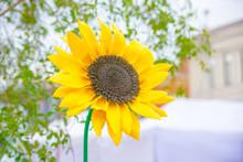 Beautiful Yellow Big Bud Artificial Sunflower Handmade Foam Material On Blurred Light Background.