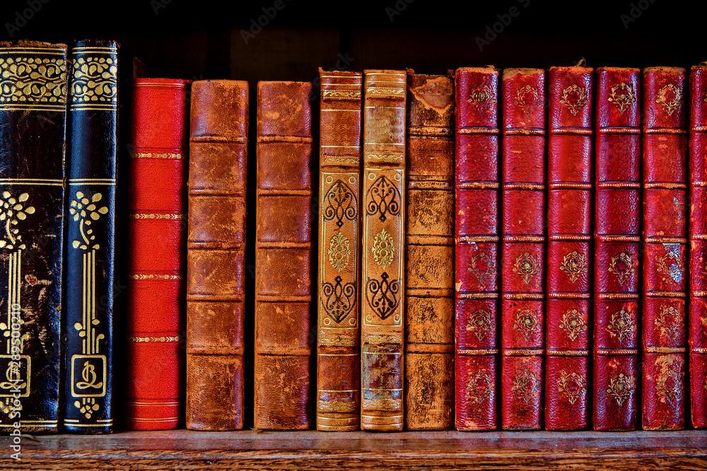 Fototapety, obrazy: a shelf with old books