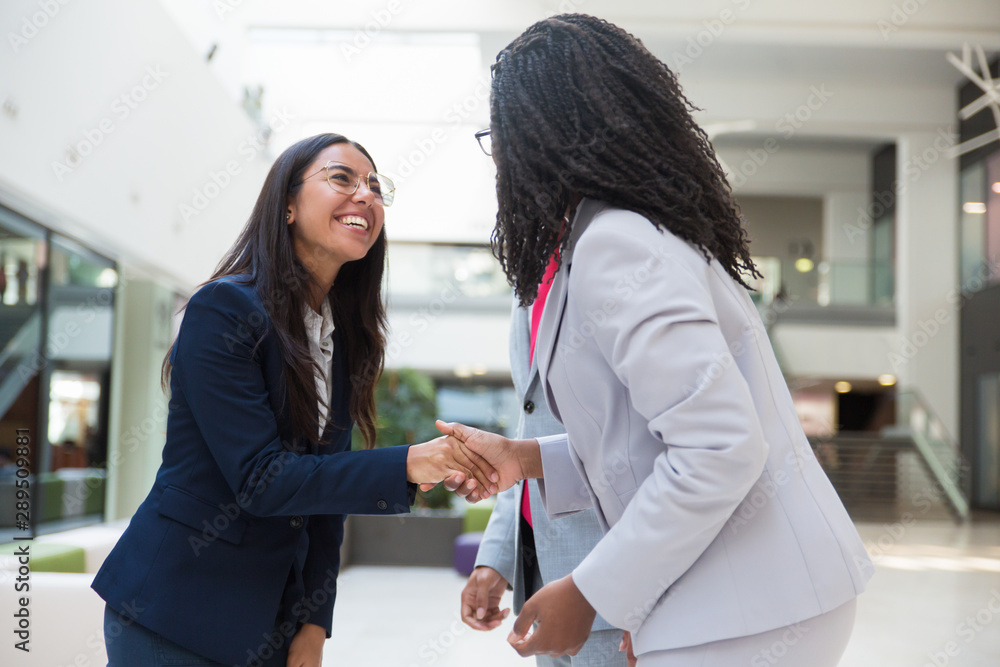 Fototapeta Happy excited diverse business partners greeting each other in hallway. Business women standing in office hall, shaking hands with each other, smiling and laughing. Multiethnic communication concept