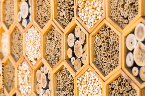 Obraz na płótnie Geometric patterns bee hotel habitats with hollow tubes