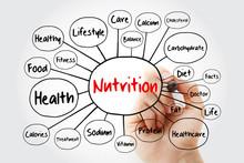 Nutrition Mind Map Flowchart W...