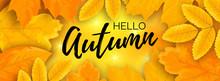 Horizontal Hello Autumn Shiny Banner