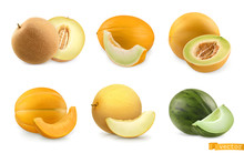 Melons, Sweet Fruits. 3d Realistic Vector Icon Set