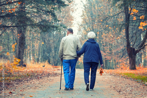 Obraz Senior couple walking in an autumn park. - fototapety do salonu