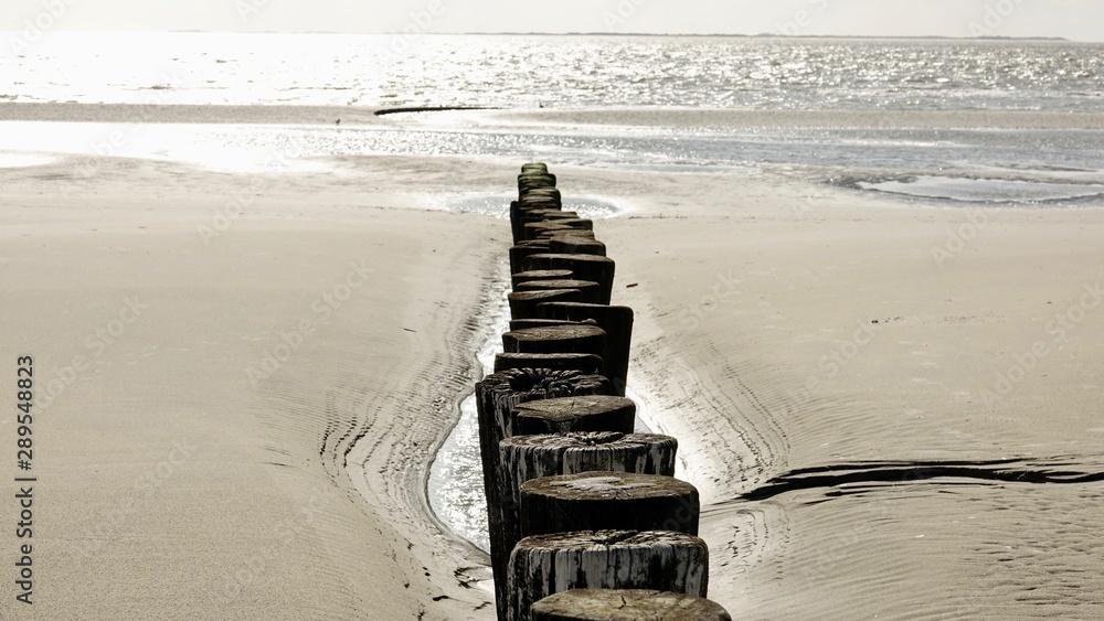 Fototapeta Hölzerne Wellenbrecher am Strand von Ameland, Nordsee