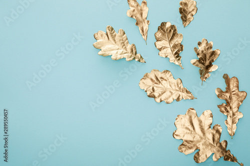 top view of autumnal golden foliage scattered on blue background