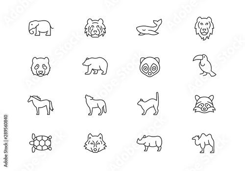 Fotografía  Wild animals thin line vector icons. Editable stroke