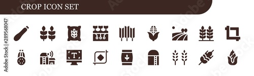 Photo crop icon set