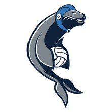 Sea Lion - Seal Water Polo Or Beach Volleyball Mascot Vector Illustration