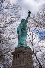 Back Portrait Of The Statue Of Liberty Framed By Tree Branches, New York City, USA.