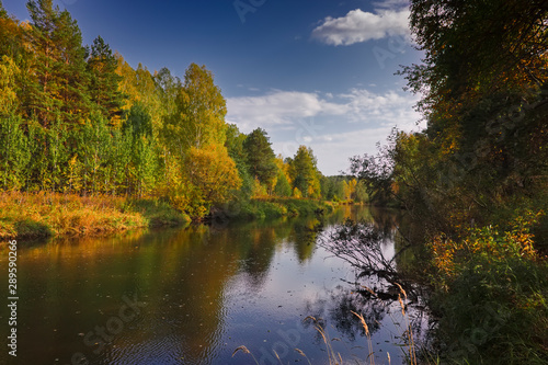 Foto auf Gartenposter Fluss Autumn landscape on the banks of a forest river on a sunny warm day.