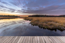 Boardwalk In Natural Heathland...
