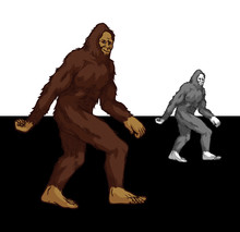 Bigfoot Walking - Mystical Creature Sasquatch Colored And Grayscale Good Looking On Dark And Light Background