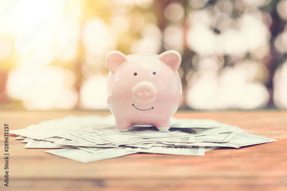 Fototapety, obrazy: Piggy Bank on money bank note dollar on wood table in the public park.money saving financial concept.retro vintage color tone.
