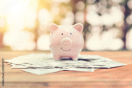 Fotografía Piggy Bank on money bank note dollar on wood table in the public park