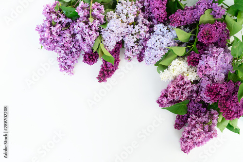 Photo Fresh lilac flowers