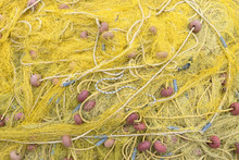 Yellow Fishing Nets On The Sho...