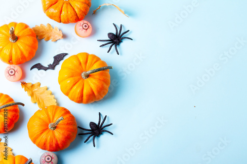 Aluminium Prints Equestrian Halloween flat lay background