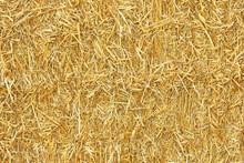 Bale Of Golden Straw Texture. ...